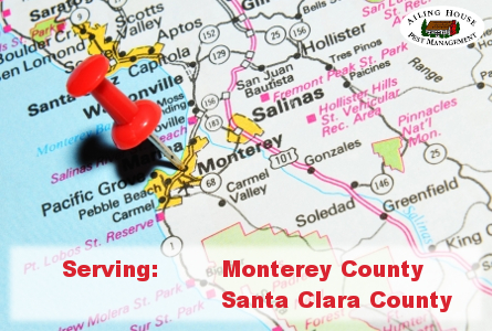 Pest Control Service – Termites Ants Bees Bedbugs Monterey County Santa Clara County Ailing House Pest Management Inc