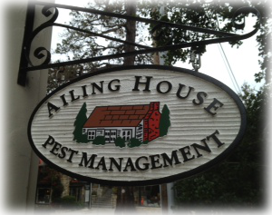Ailing House Pest Management - Pest Control Services - Milpitas CA