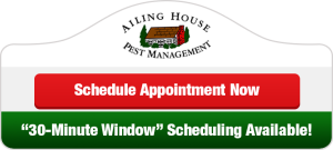 Ailing House Pest Control - Schedule Appoinment Now Button