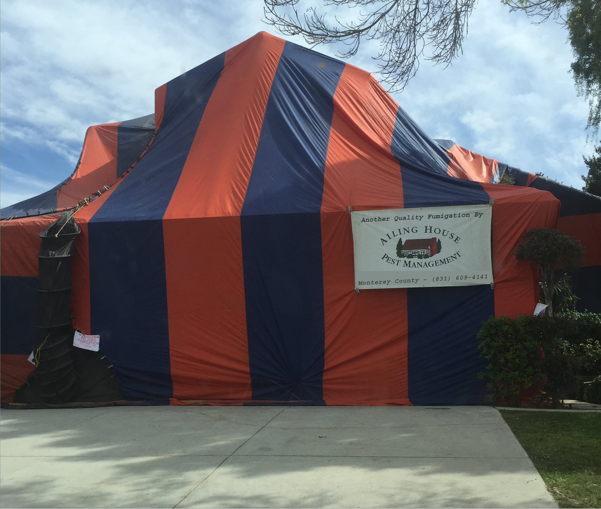 Tenting House for Termites u2013 Low Cost Termite Fumigation Treatment - All Monterey County - Santa Clara County CA | Ailing House Pest Management Inc. & Tenting House for Termites u2013 Low Cost Termite Fumigation Treatment ...