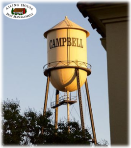 Tenting House for Termites – Lowest Price Guaranteed Pest Fumigation Treatment - Campbell CA