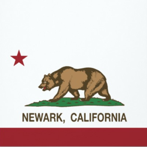 Newark-CA-tenting-house-cost-termites-lowest-cost-  sc 1 st  Ailing House Pest Management Inc. & Tenting House for Termites u2013 Lowest Price Guaranteed Fumigation ...